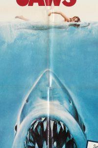 JAWS-DETALLE
